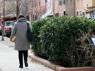 More than 20 stormwater planters will be built in Yorktown, like the ones in South Philadelphia, as a part of the city's Green City, Clean Waters initiative. | JAMIE COTTRELL / THE TEMPLE NEWS