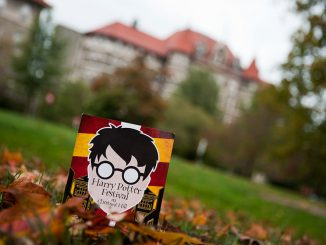 Chestnut Hill will turn into Hogsmeade, inspired by Hogswart, for its Harry Potter Festival on Oct. 18-19. There will be authentic Harry Potter themed foods, including butterbeer, a Harry Potter-themed pub crawl and a Quidditch tournament. | Alex Udowenko TTN