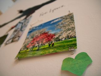 """At the Painted Bride, visitors leave notes about personal experiences with trees at """"Planting a Forest."""" 